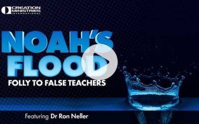 Noah's Flood: Folly to False Teachers